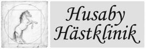 Klinikveterinär till Bergsåkers Hästklinik
