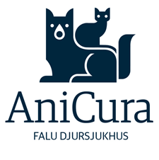 Två veterinärer sökes till AniCura Falu Djursjukhus