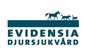 Veterinär till Hästkliniken i Mantorp