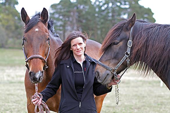 Prisas för Årets Hästforskningsprojekt