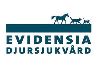 Legitimerad veterinär och Chefveterinär till Karlstad