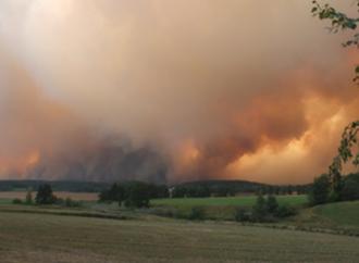 Seminarium: Naturkatastrofer – hur påverkas djuren och deras välfärd, och hur hanterar vi det?