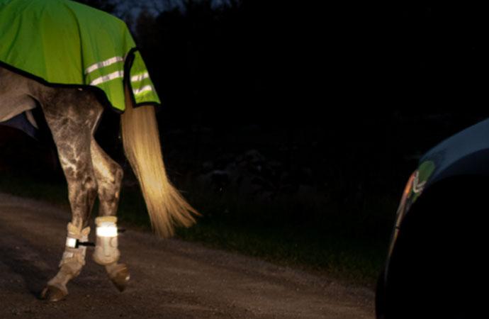 Nu ökar hästolyckorna i trafiken