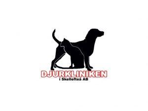 Djurkliniken i Skellefteå söker medarbetare