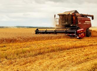 Livsmedelsstrategins nya plan kostar 846 miljoner