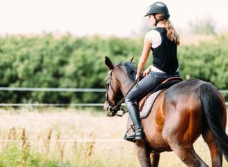 Fokus på rehab i ny hästförsäkring