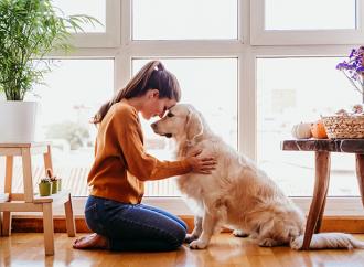 Husdjur sprider inte covid-19