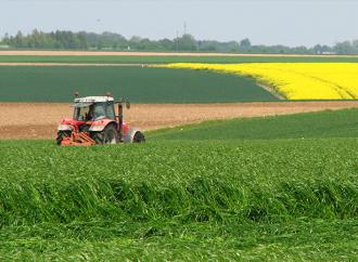 Lantbruket kan ta emot 8 000 permitterade