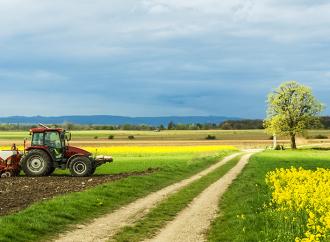 Svenskt lantbruk stadigt under covid-19