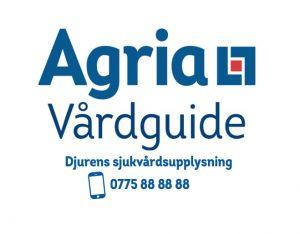 Agria Vårdguide söker fler veterinärer